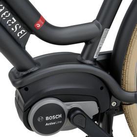E-bike voor extra ondersteuning